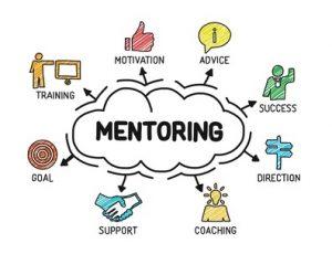 Mentor programma